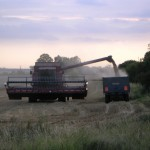 2005no0036-home-farm-working-late