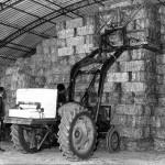 la-hb-stroude-home-farm-collection-012